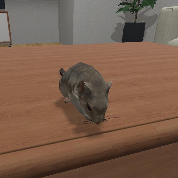 VR-Szenario Maus (Musophobia)